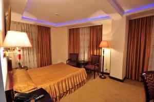 Hotel Arca lui Noe, Hotel  Sinaia - big - 9