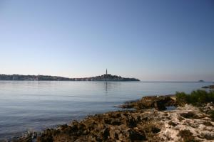 Apartment in Rovinj/Istrien 11711, Apartmanok  Polari - big - 12