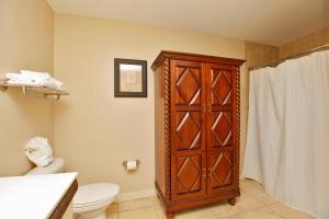 One-Bedroom Apartment 736