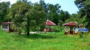 Camping Bolshaya Laba, Kempingy  Psemen - big - 17