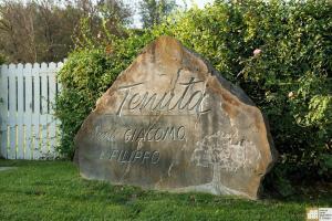 Urbino Resort, Venkovské domy  Urbino - big - 114