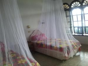 Sony Hotel Samosir