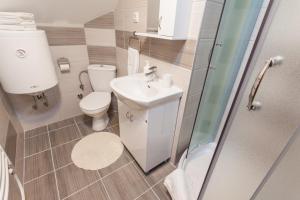 Vila Aleksandra, Apartments  Zlatibor - big - 36