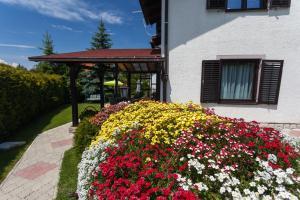 Vila Aleksandra, Apartments  Zlatibor - big - 37