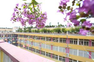 Wuhan Xinguobo Green View Hotel