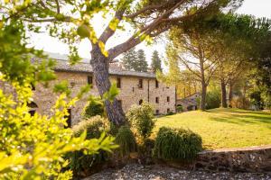 Borgo Il Poggiaccio Residence, Country houses  Sovicille - big - 104