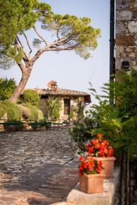 Borgo Il Poggiaccio Residence, Country houses  Sovicille - big - 83