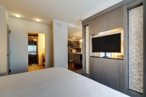 Номер-студио с кроватью размера «king-size» и диваном-кроватью