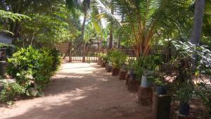 Nilaveli Beach Rooms, Panziók  Nilaveli - big - 104