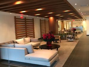 Apartment Iceboat Terrace, Appartamenti  Toronto - big - 16