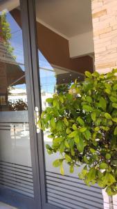 San José - Hospederia del Santuario, Hotely  San Nicolás de los Arroyos - big - 2