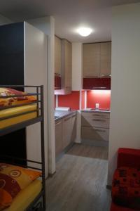 Apartments Klinovec, Apartmány  Loučná pod Klínovcem - big - 11