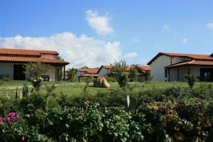 Agriturismo Ninea, Country houses  Ricadi - big - 29