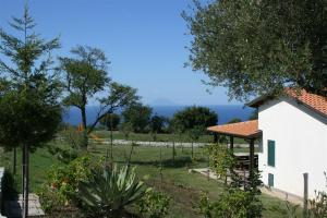 Agriturismo Ninea, Country houses  Ricadi - big - 14