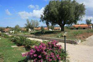 Agriturismo Ninea, Country houses  Ricadi - big - 12