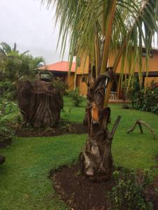 Cabañas Hinariru, Dovolenkové domy  Hanga Roa - big - 74
