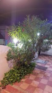 Karthik Residency, Pensionen  Pondicherry - big - 52
