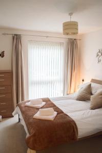 Modern Apartment - Copper Quarter, Апартаменты  Суонси - big - 12
