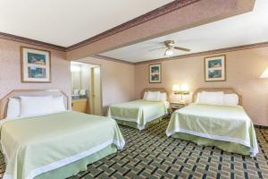 Double Room with Three Double Beds - Non-Smoking