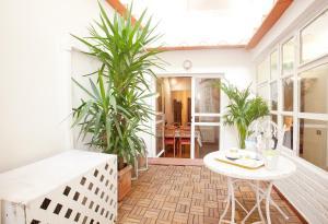 Pettirosso Home and Garden