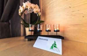 Hotel Arte SPA & Park, Hotels  Velingrad - big - 43