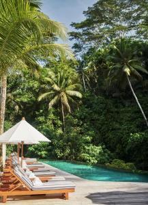 Four Seasons Resort Bali at Sayan (26 of 80)