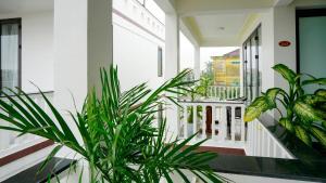 Hoi An Maison Vui Villa, Отели  Хойан - big - 7