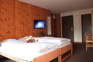 Appartements Monte Rosa, Apartmány  Täsch - big - 25