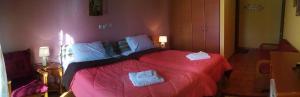Hotel Aoos, Отели  Конитса - big - 19