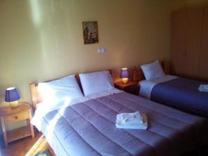 Hotel Aoos, Отели  Конитса - big - 1