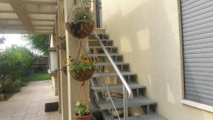 Holiday Home Raz, Appartamenti  Kefar Sava - big - 29