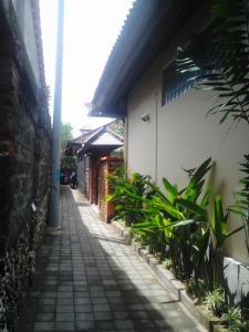 Naru Nua House, Villas  Sanur - big - 14