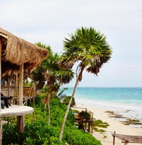 Papaya Playa Project (11 of 65)