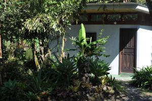 Talamanca Reserve, Hotely  Rivas - big - 22