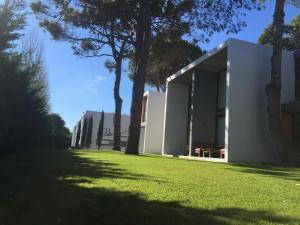 Filo De Los Medanos, Chaty v prírode  Villa Gesell - big - 50