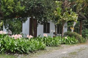 Talamanca Reserve, Hotely  Rivas - big - 7