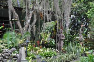 Talamanca Reserve, Hotely  Rivas - big - 39