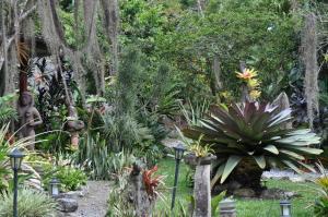 Talamanca Reserve, Hotely  Rivas - big - 38