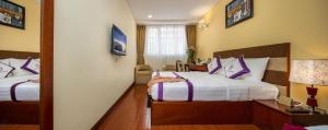 TTC Hotel Deluxe Saigon, Hotely  Ho Či Minovo Město - big - 9