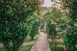 Acacia Tree Garden Hotel