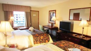 Arbors at Island Landing Hotel & Suites, Hotel  Pigeon Forge - big - 5