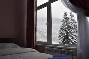Apart-Hotel 4 seasons - Apartment - Krasnaya Polyana