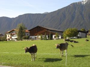 Gästehaus Sonnweber, Pensionen  Mieming - big - 35