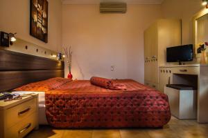 Semiramis Guesthouse, Hotely  Adamas - big - 39