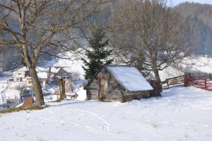 Pensiunea La Ionica, Гостевые дома  Dîmbovicioara - big - 46