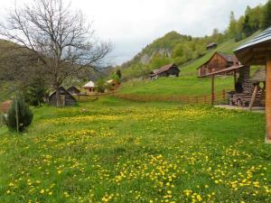 Pensiunea La Ionica, Гостевые дома  Dîmbovicioara - big - 41