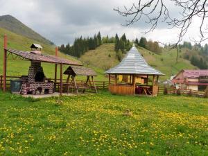 Pensiunea La Ionica, Гостевые дома  Dîmbovicioara - big - 42
