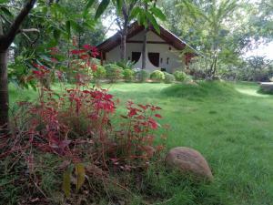 Rimaka Village, Inns  Habarana - big - 65