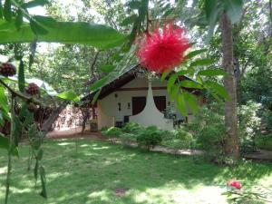 Rimaka Village, Inns  Habarana - big - 9