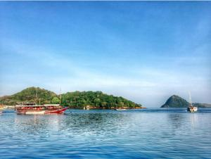Komodo Lodge, Privatzimmer  Labuan Bajo - big - 32